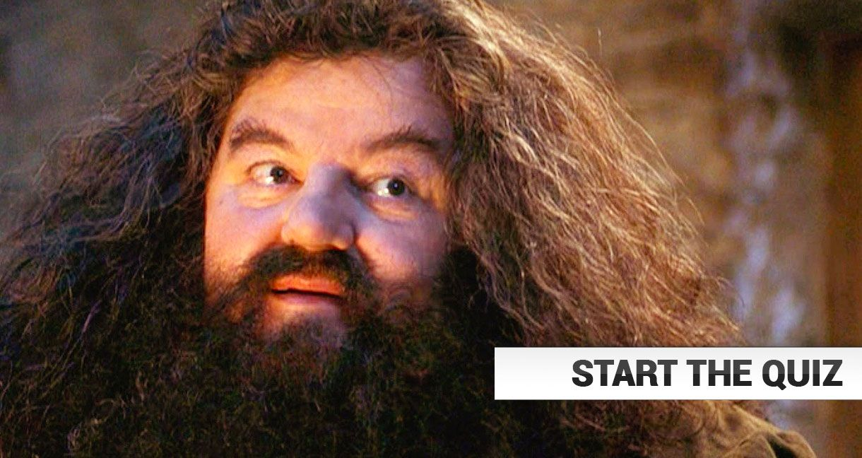 harry potter fans ace this hagrid quiz how will you do