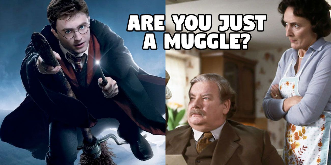 Only A Muggle Would Fail This Harry Potter Quiz | TheQuiz