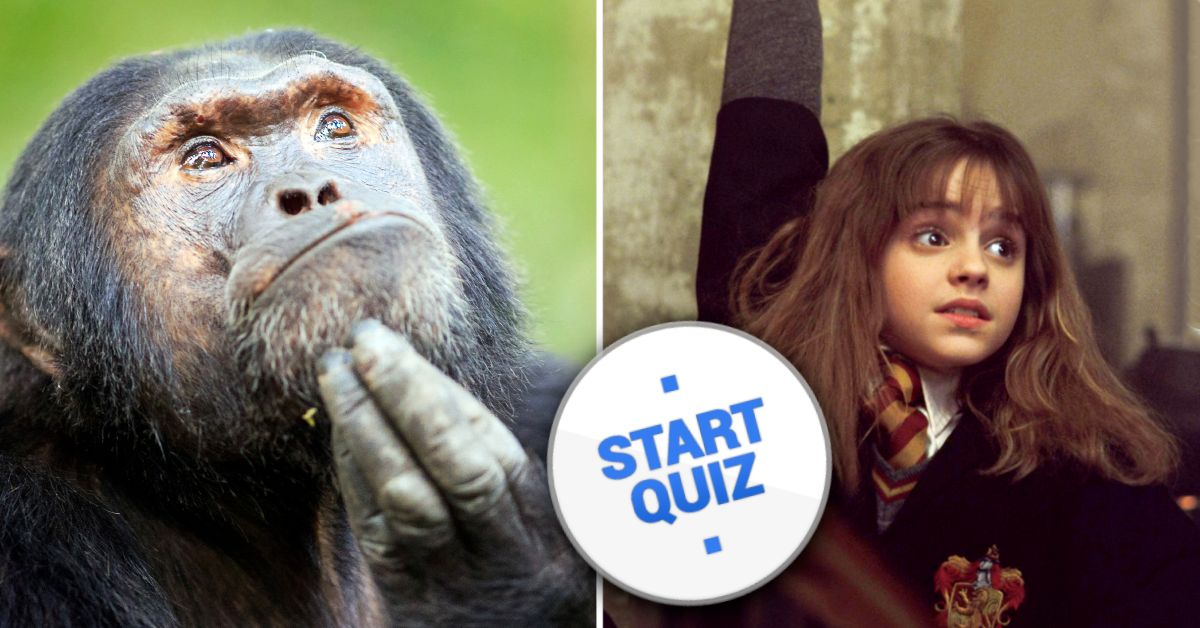 50 General Knowledge Questions Only A Know-It-All Can Answer